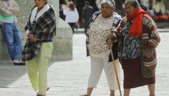 Frente frío provoca heladas en diversos municipios de San Luis Potosí