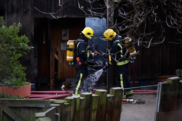 Ocho intoxicados y un animal muerto por incendio en zoo de Londres