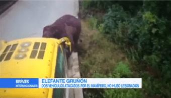 Elefante Ataca Dos Camiones Pasajeros China