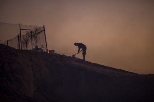 SUNLAND, CA - DECEMBER 05: A resident looks around freshly burned property during the Creek Fire on December 5, 2017 in Sunland, California. Strong Santa Ana winds are rapidly pushing multiple wildfires across the region, expanding across tens of thousands of acres and destroying hundreds of homes and structures. (Photo by David McNew/Getty Images)