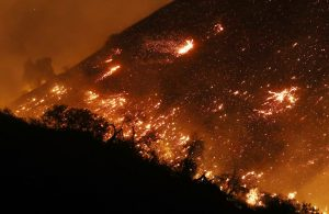 LOS ANGELES, CA - DECEMBER 05: The Creek Fire burns on a hillside in the Shadow Hills neighborhood on December 5, 2017 in Los Angeles, California. Strong Santa Ana winds are rapidly pushing multiple wildfires across the region, expanding across tens of thousands of acres and destroying hundreds of homes and structures. (Photo by Mario Tama/Getty Images)
