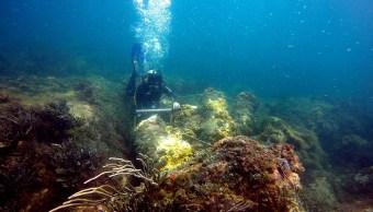 Localizan vestigios de barcos hundidos en Yucatán