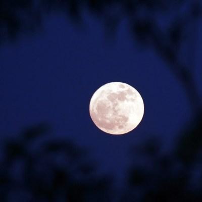 Última superluna del 2019 será después del equinoccio de primavera