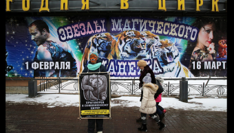 Protesta en Rusia contra el maltrato animal en circos