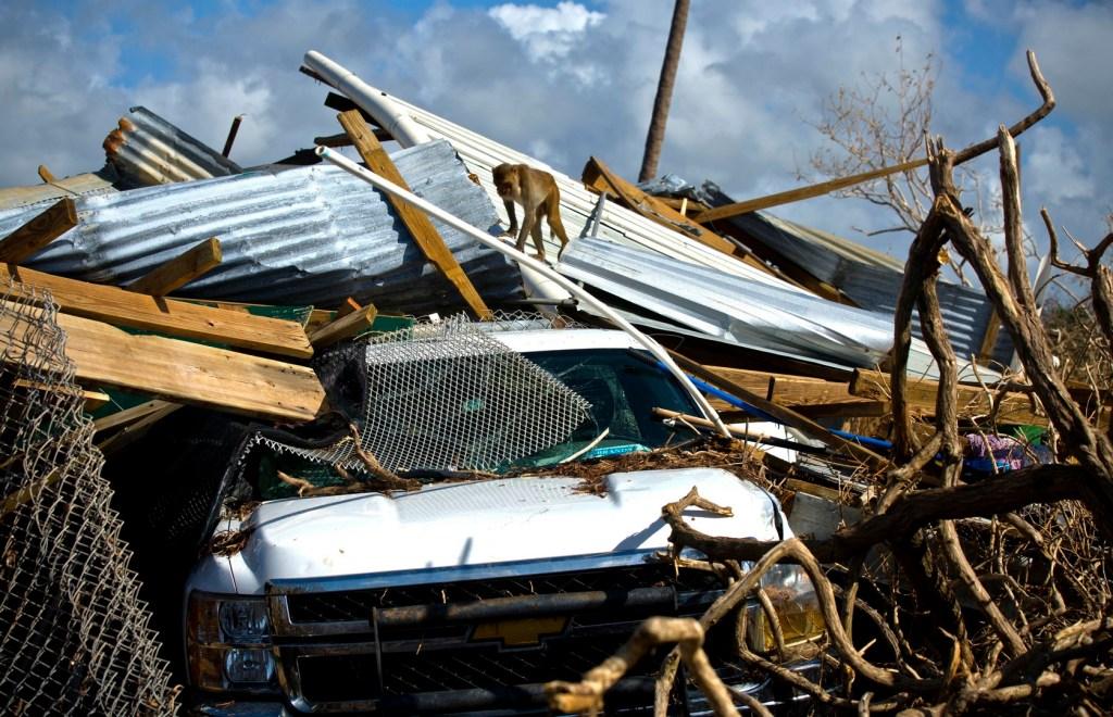Temporada de huracanes 2017 fue una de las más devastadoras