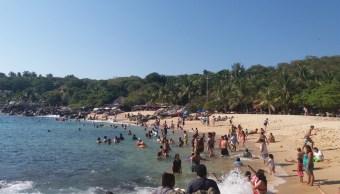 Recolectan 13 toneladas de basura en playas de Puerto Escondido
