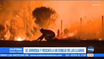 Vientos Fortalecen Incendios Forestales California