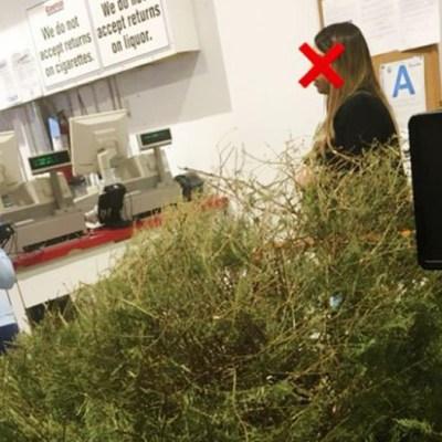 Mujer devuelve su árbol de Navidad porque estaba