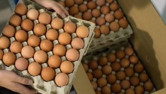 Baja el precio del aguacate; huevo sube hasta 75 pesos