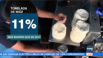Cofece Reacciona Aumento Precio Tortilla