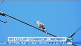 Extra Extra: Canto de los pájaros podría advertir sobre el cambio climático