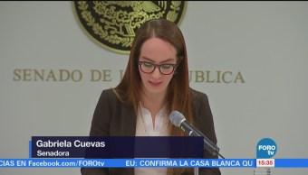 Gabriel Cuevas Responde Pan Senadora