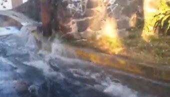 Reportan fuerte fuga de agua en Insurgentes Sur, en la Ciudad de México