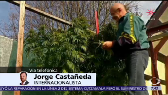 Jorge Castañeda Habla Legalización Marihuana