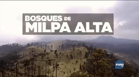 Promo Tierra Nadie Bosques De Milpa Alta