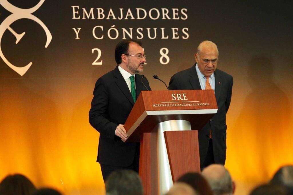 OCDE: Reformas estructurales y multilateralismo son los mejores instrumentos de México