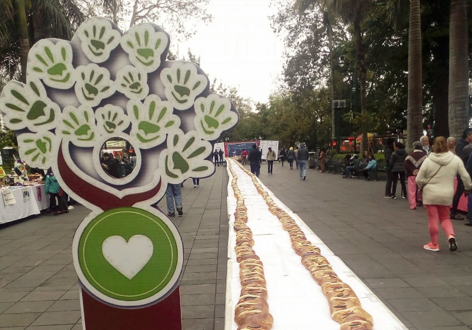 rosca reyes xalapa rompe record midio 142 metros