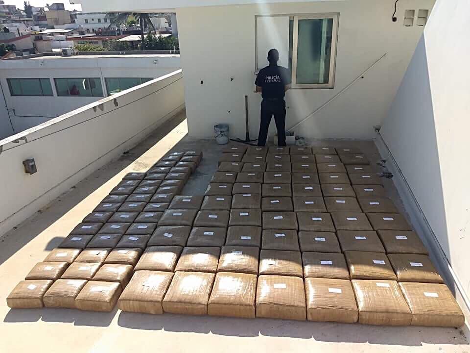 Policía Federal decomisa marihuana en Cosoleacaque