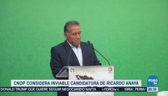 CNOP considera inviable candidatura de Ricardo Anaya