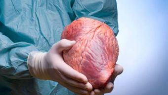 Aumenta número de donadores de órganos en México