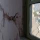Mancera: CDMX destinará mil mdp al seguro de vivienda por sismos