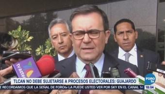 Guajardo Tlcan Debe Sujetarse Proceso Electoral
