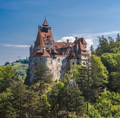 Empresa de Estados Unidos cultivará marihuana en Transilvania