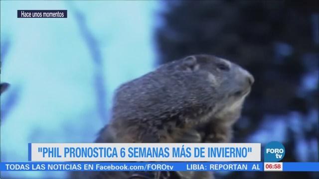 La marmota 'Phil' pronostica seis semanas más de invierno en EU