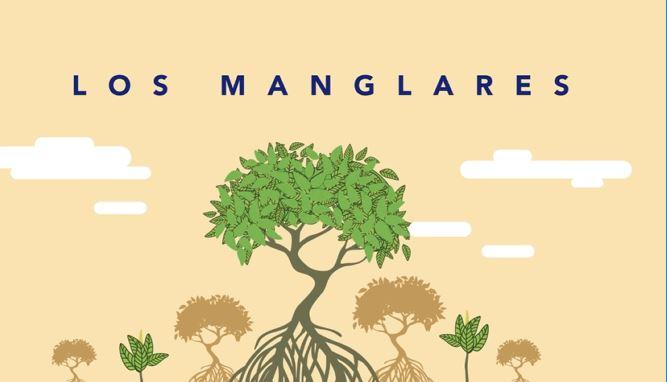 #Despejandodudas Manglares Genaro Lozano Importancia Ecosistemas