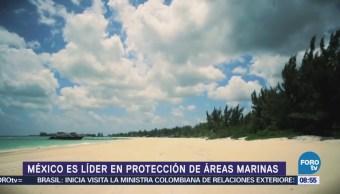 México es líder en protección de áreas marinas