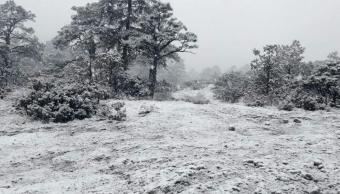 Chihuahua registra nuevas nevadas y vientos fuertes por frente frío 34