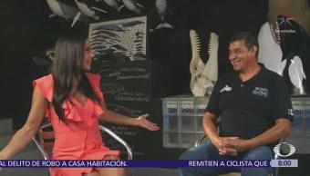 Francisco Gómez, Director Museo Ballena Bcs Al Aire