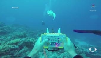 Instituto Tecnológico de Massachusetts, crea pez robótico
