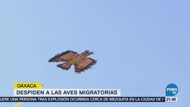 Despiden a las aves migratorias en Oaxaca