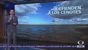 Indígenas mayas rechazan criadero de cerdos cerca de cenotes