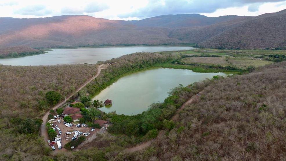 Laguna 'La Colorada', nuevo santuario de cocodrilos en Colima