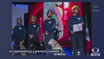 Reconocen Binomios Caninos Secretarías De Defensa Nacional Marina, Unam