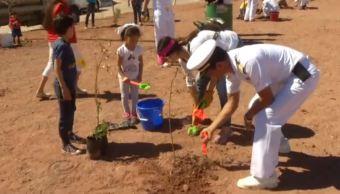 Secretaría de Marina reforesta áreas habitacionales en Guaymas, Sonora