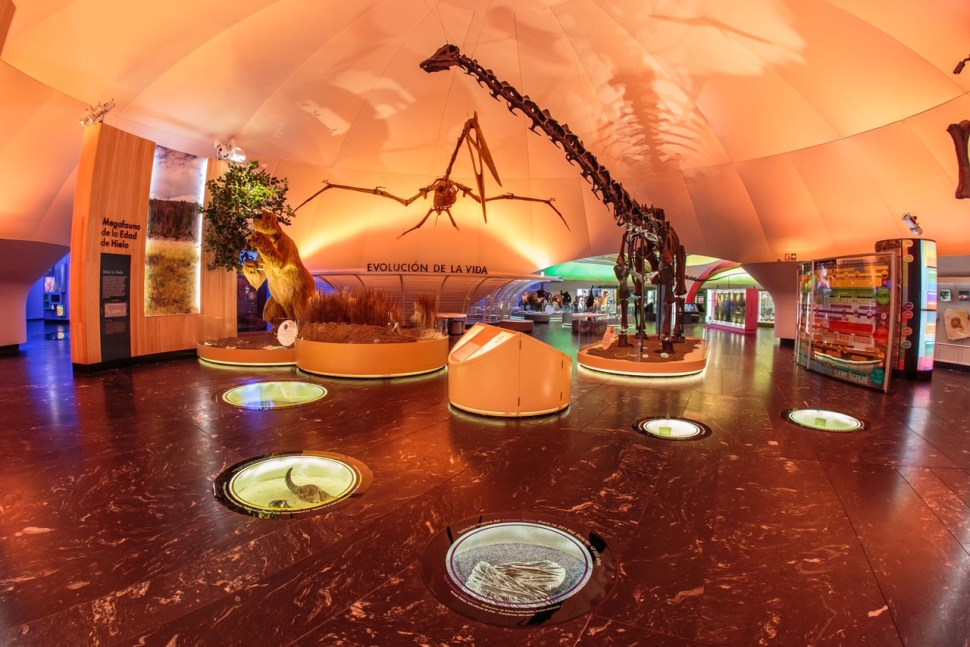 Remodelan Museo de Historia Natural de la CDMX