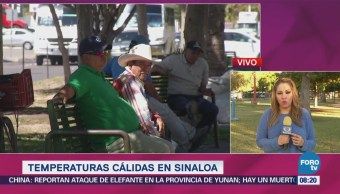 Registran Temperaturas Cálidas Sinaloa