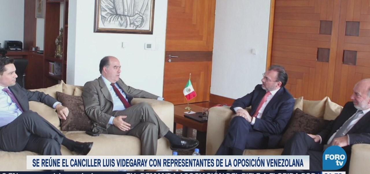 Videgaray sostiene encuentro con representantes de la oposición venezolana