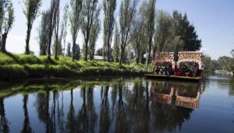Realizan acciones de mantenimiento en canales y zona chinampera de Xochimilco