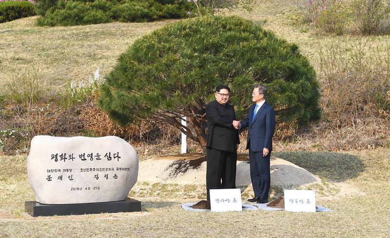Kim y Moon plantan un árbol en una simbólica ceremonia
