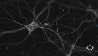 Científicos neutralizan gen del Alzheimer