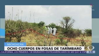 Encuentran ocho cuerpos en dos fosas clandestinas en Michoacán