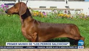 Extra Extra: Primer museo de los 'perros salchicha'