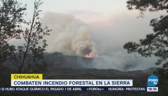 Incendio Forestal Afecta 10 Mil Hectáreas Sierra Chihuahua