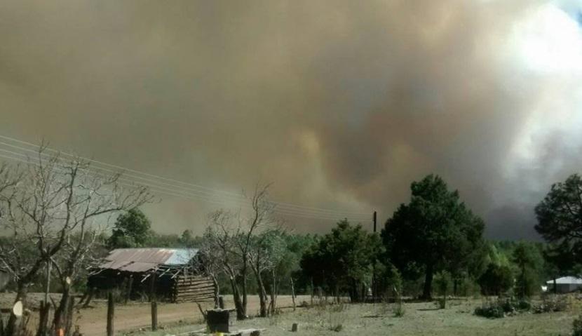 Incendio forestal arrasa con 10 mil hectáreas en sierra de Chihuahua