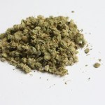 Aseguran 74 kilos de marihuana en el aeropuerto de Veracruz