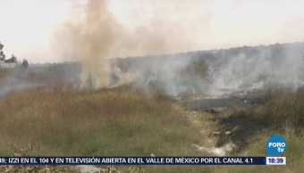 Sofocan Incendio Pastizales Guanajuato Municipios León